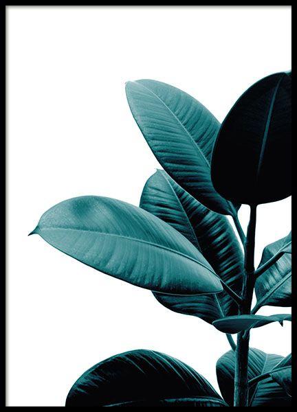 botanikposter mit dem foto einer gr252npflanze mit sch246nen