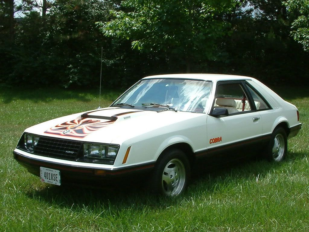 1979 Ford Mustang Cobra  Cars Blue Oval  Pinterest  1979 ford