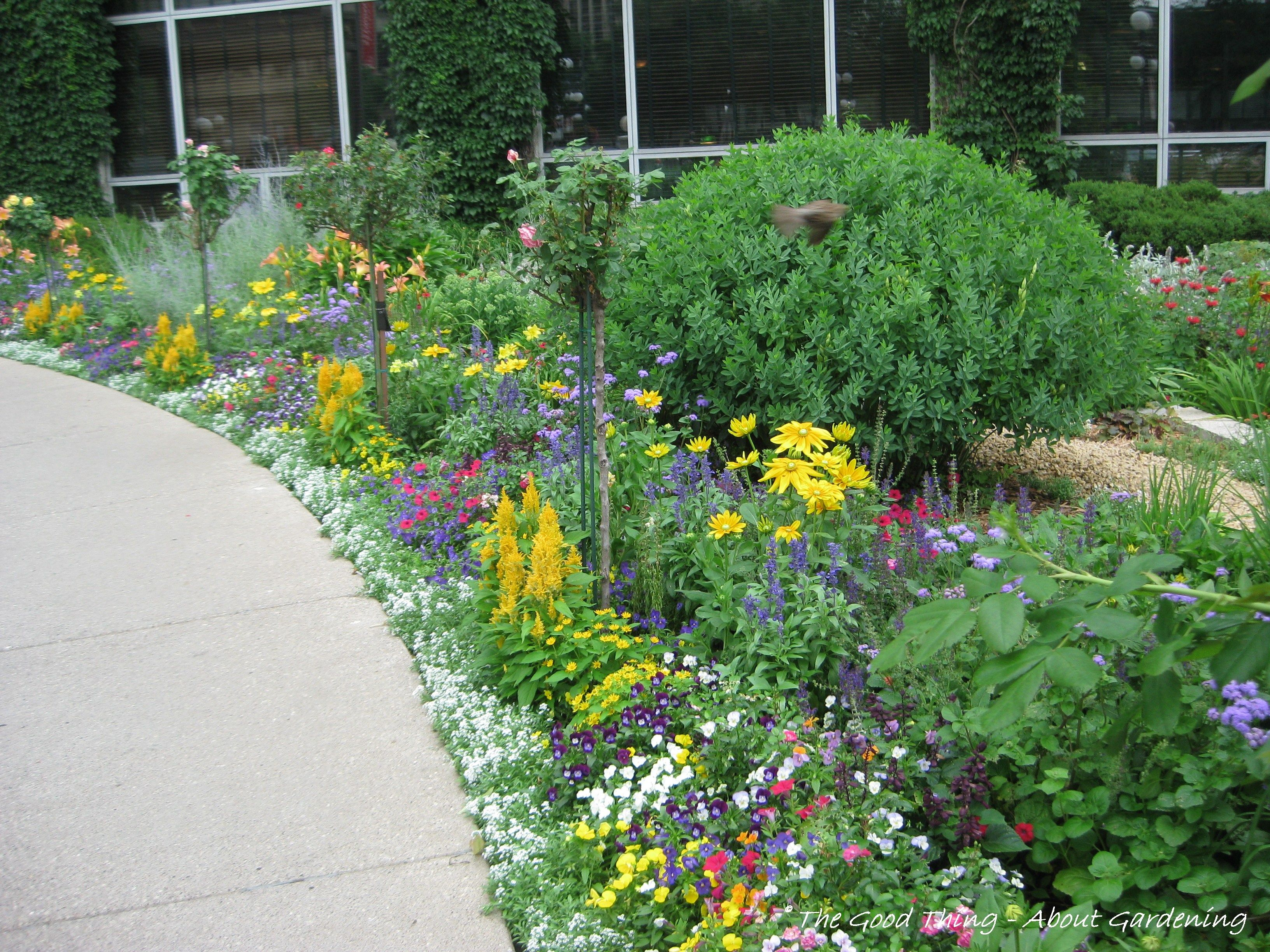 garden edging next to sidewalk Flower gardens include annuals to