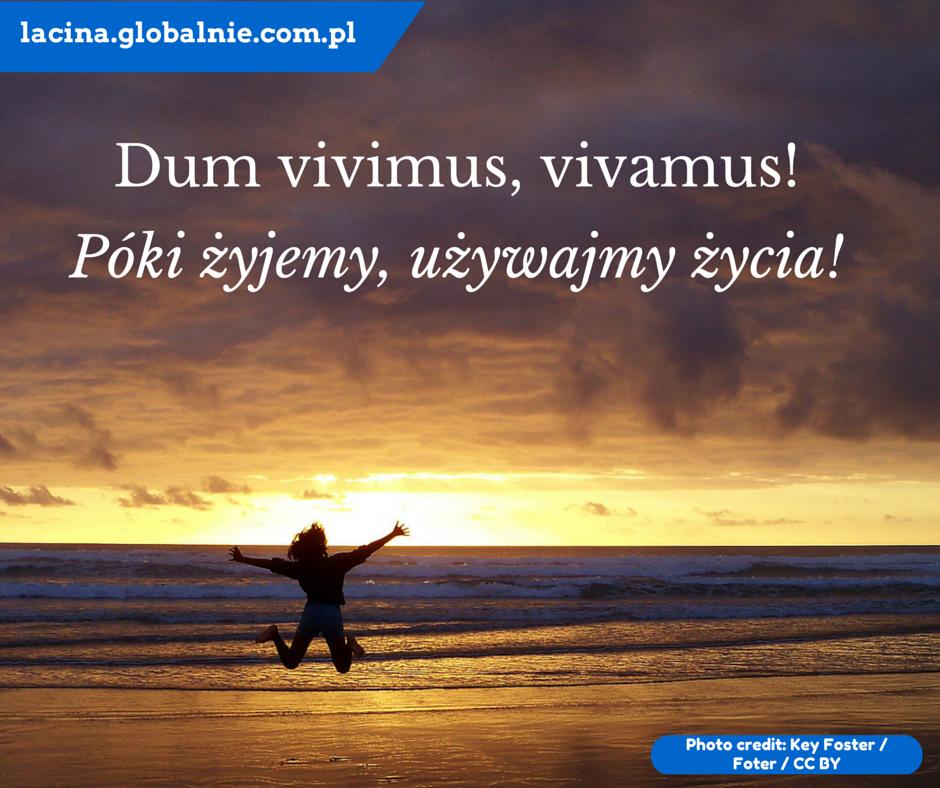Sentencje łacińskie O życiu Dum Vivimus Vivamus Póki