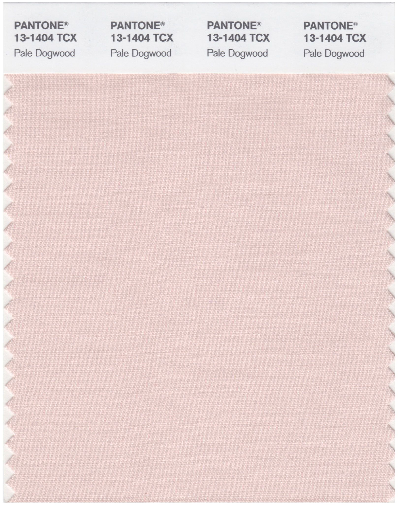 Match For Light Pink Ribbon A Bit Darker Than Scallop Shell Pantone Smart 13 1404 Tcx Color Swatch Card Pale Dogwood Magazine Cafe Nyc Usa