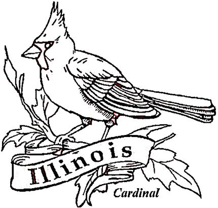 Cardinal Bird Of Illinois Coloring Page Cardinal Birds Coloring