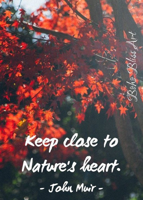 Keep Close To Natures Heart John Muir Quote Art And Quote