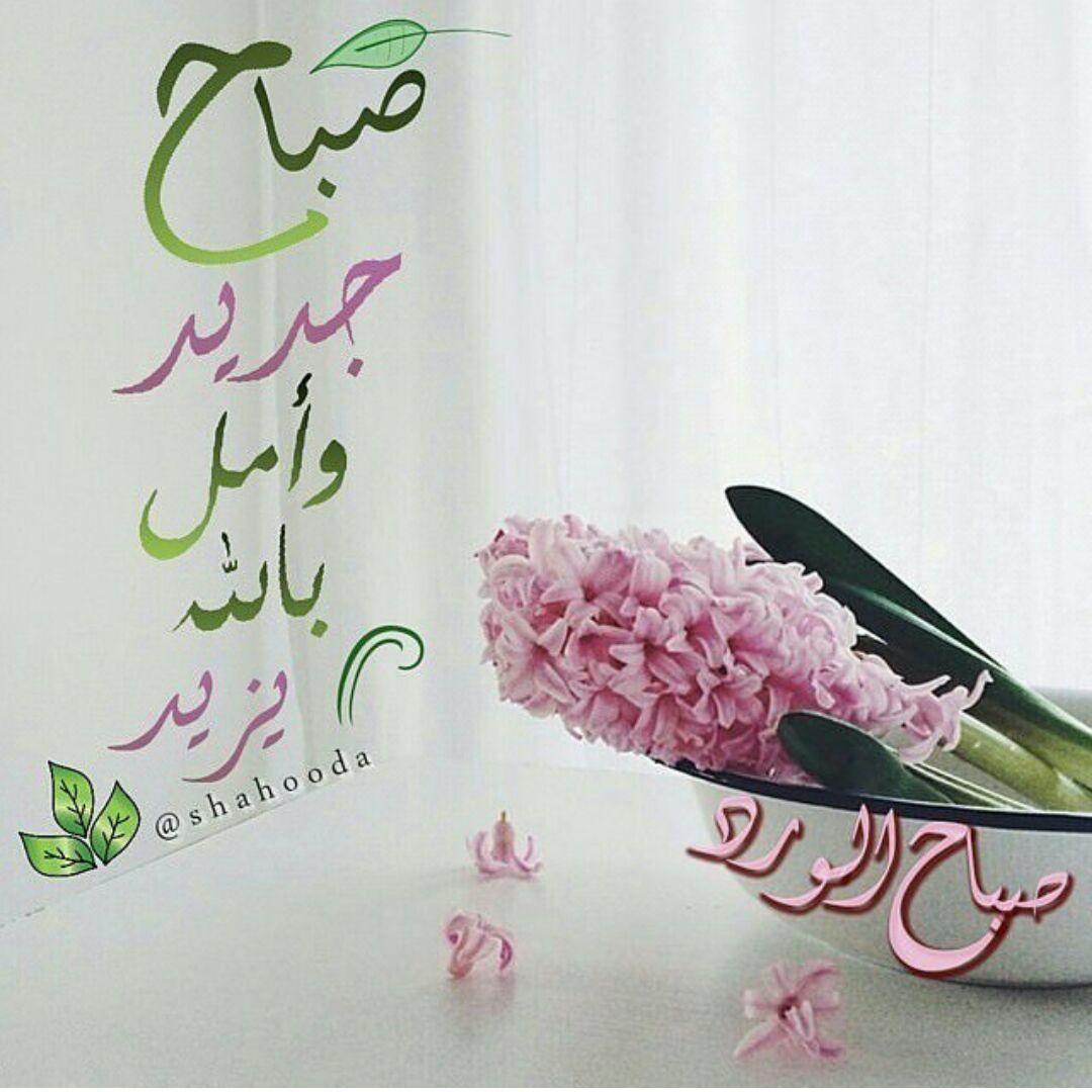 صباح جديد وأمل بالله يزيد Good Morning Images Flowers Morning Images Good Morning Images