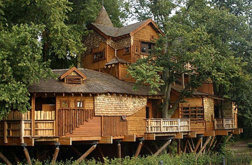 casas en arboles - Buscar con Google Casas y exteriores Pinterest - casas en arboles