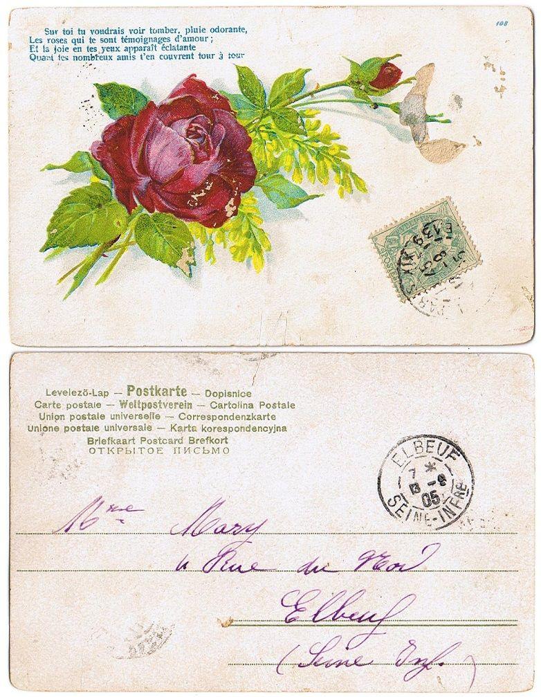 Ephemera - old french postcard with rose, sent 1905