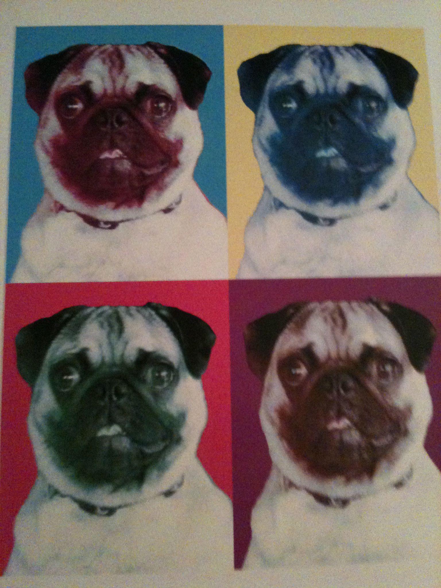 Poster I Had Done Of Lily Pug Love Pug Life Pugs