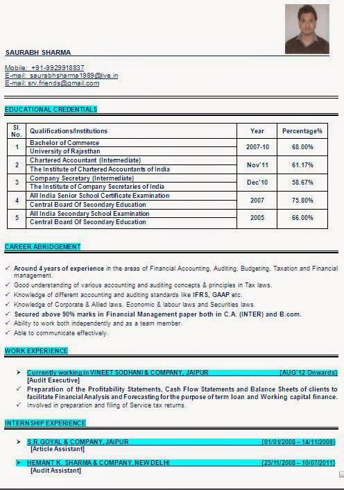 curriculum vitae template word 2007 Sample Template Example - profile template word