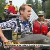 Salmon Cannon - human impact solutions for dams/hydroelectric - Earth and Environmental Science