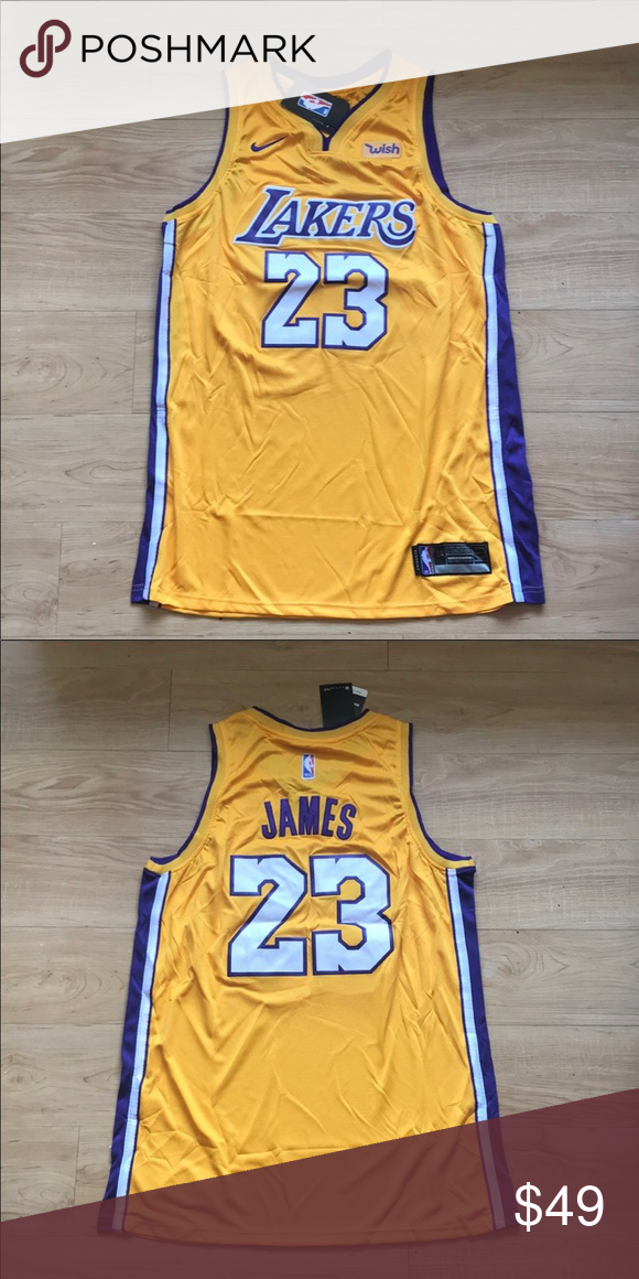 online retailer 4fb44 379e2 Lebron James Los Angeles Lakers Jersey Brand new LA Lakers ...