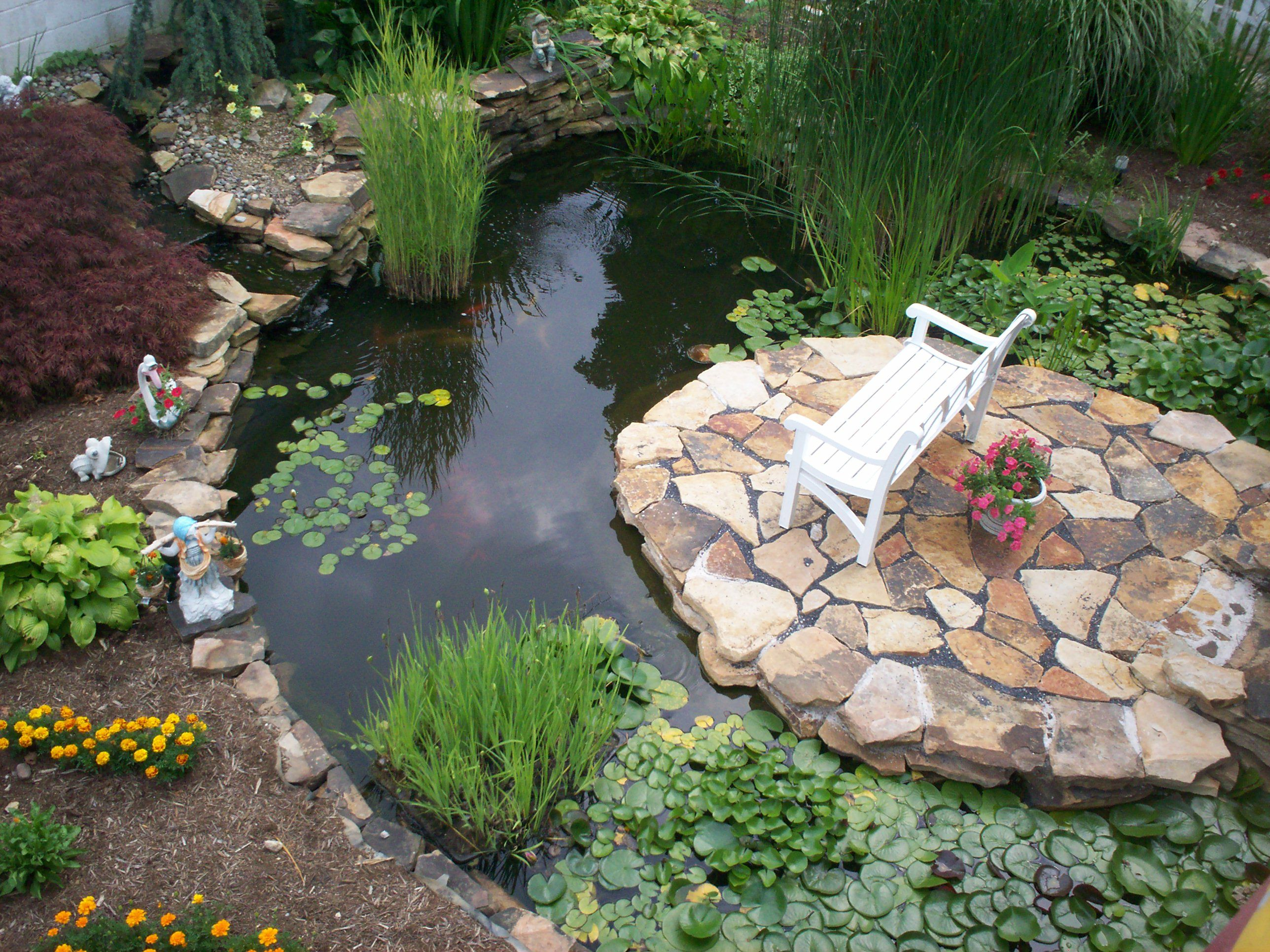 Charmant Water Garden With Island Bench.