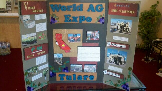Pin By Mary Lopez On My Diy Projects Science Fair Projects Diy Crafts Crafts