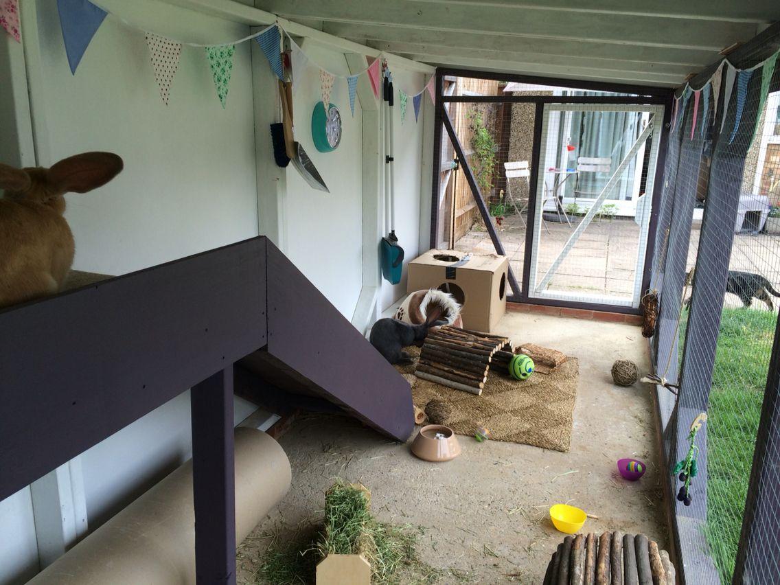 15++ Silicon valley animal shelter ideas