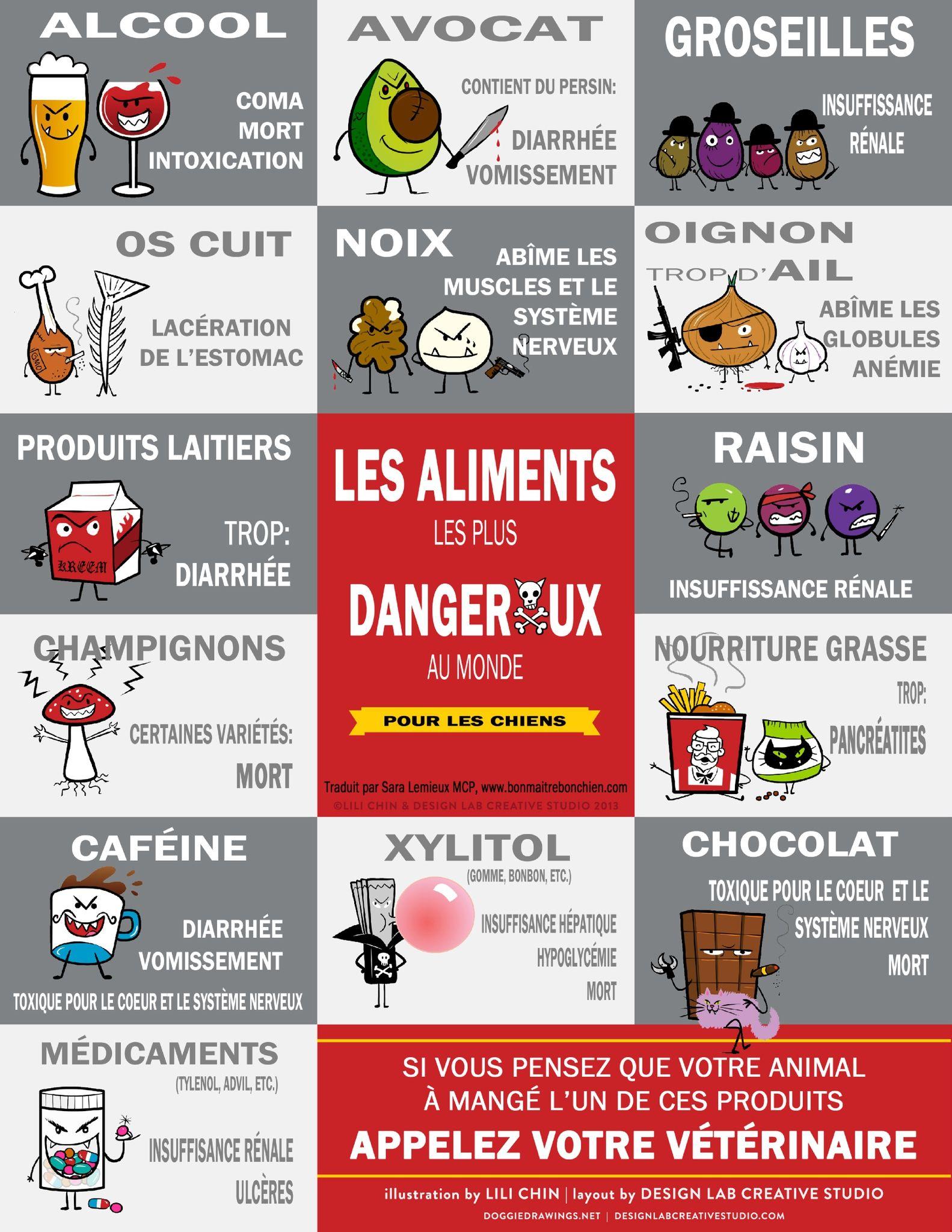 Favori aliments dangereux pour les chiens | truc pour chien | Pinterest  CP12