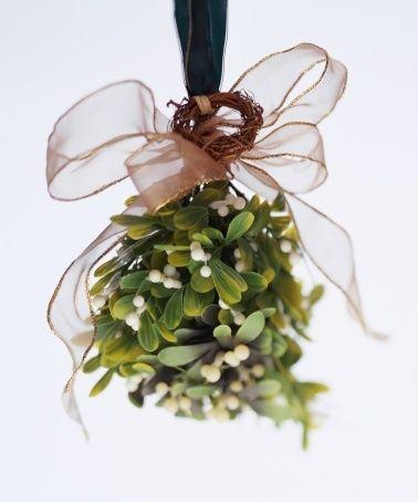 la-la-la-bonne-vie:  mistletoe