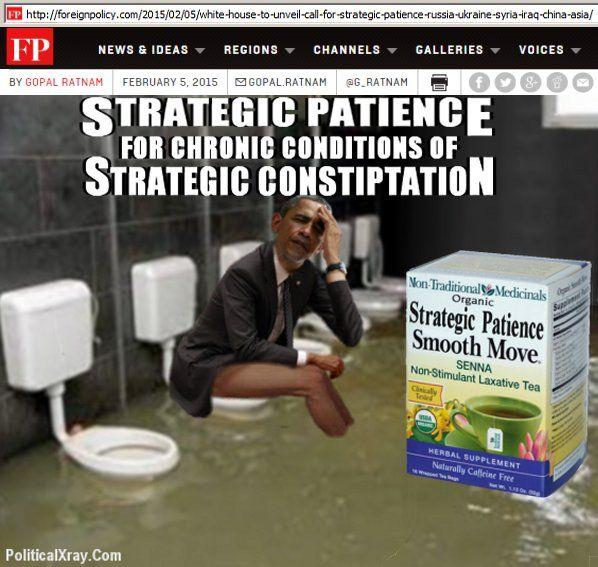 OBAMA CARTOONS: President Obama is suffering from Strategic Consti...