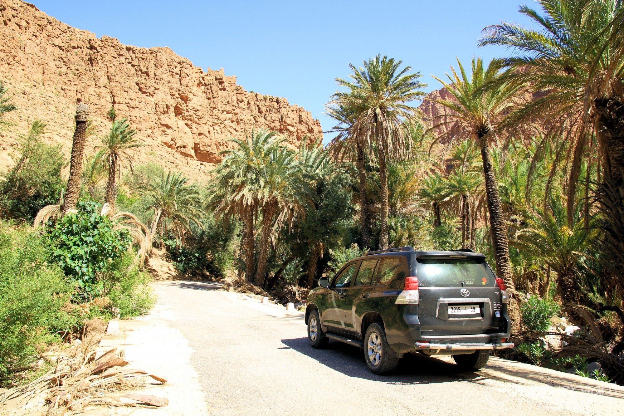 tour from Agadir to Anti-Atlas & Massa oasis in 2 days