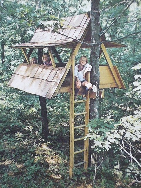 kid's elevated A-frame  clubhouse in the trees