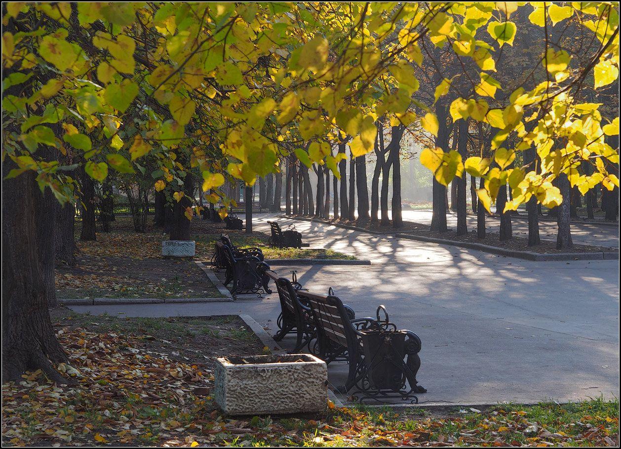 """фото """"осень в парке"""" метки: город, пейзаж,"""