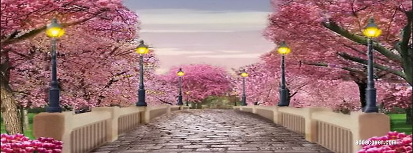 Spring Facebook Covers Spring Facebook Profile Covers Spring Spring Scene Beautiful Backdrops Backdrops