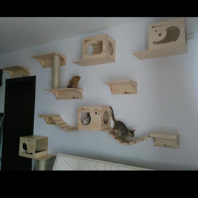 Wonderful Custom Wall Mount Cat Furniture Wall Systems For Cats Cat Bridge Cat  Shelves Customized Cat Condos