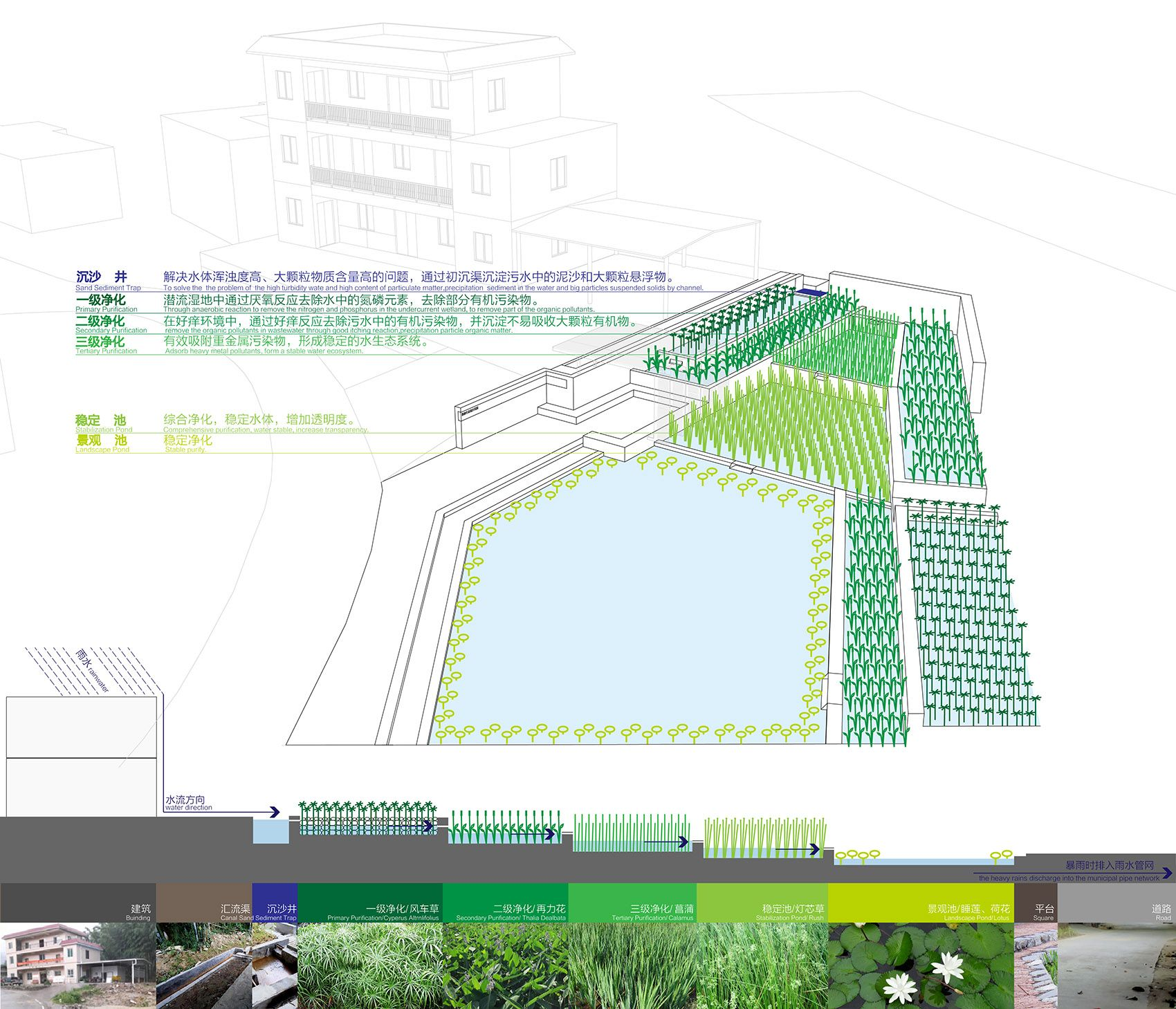 Pin by 靖諺 黃 on y4p2 Rainwater, Ecology, Water