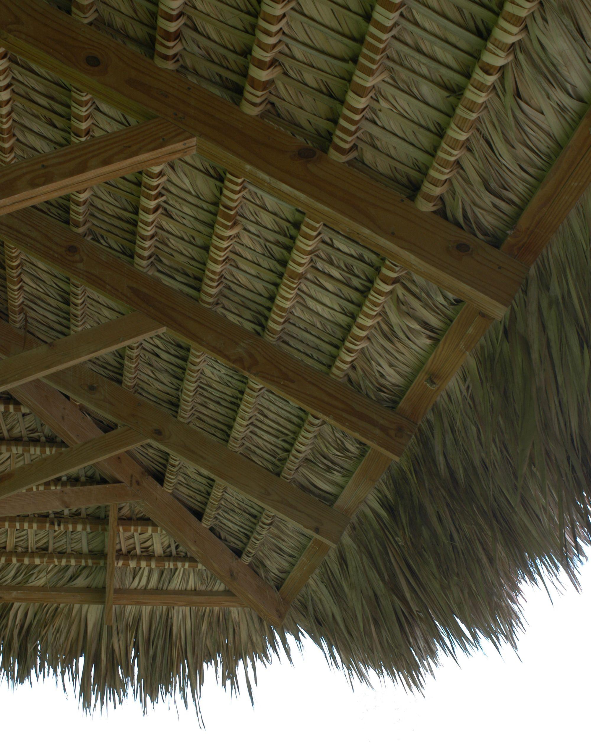 Thatch Roof Estructuras De Madera Tipos De Madera Hoteles De Playa