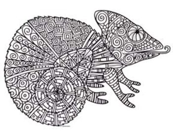 Black White Detailed Chameleon Coloring Sheet Coloring Pages Detailed Coloring Pages Childrens Art Projects