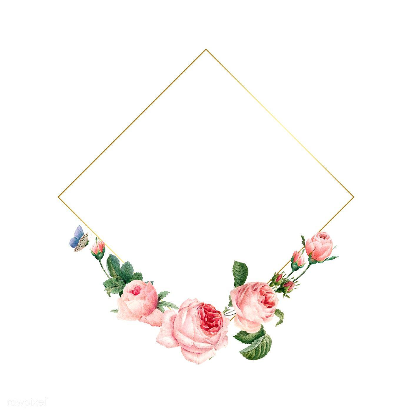 Download Premium Vector Of Blank Square Pink Roses Frame On White Rose Frame Monogram Backgrounds Floral Border Design