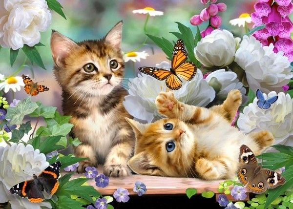 Howard Robinson, artist ~ kittens playing with butterflies ...