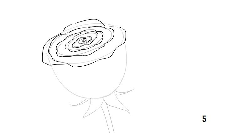 1001 Idee Per Come Disegnare Una Rosa Con Tutorial Come
