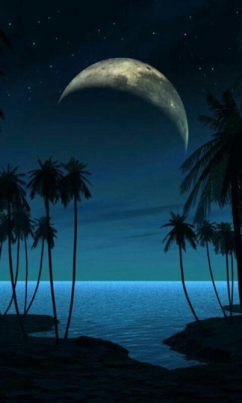 Noche y cielo
