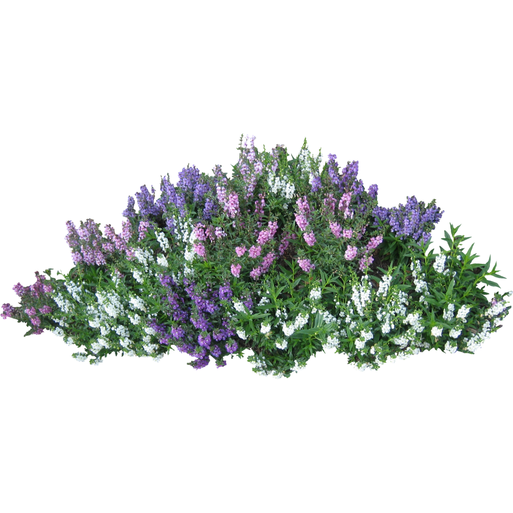 Flower garden clip art free png for Flowering landscape plants