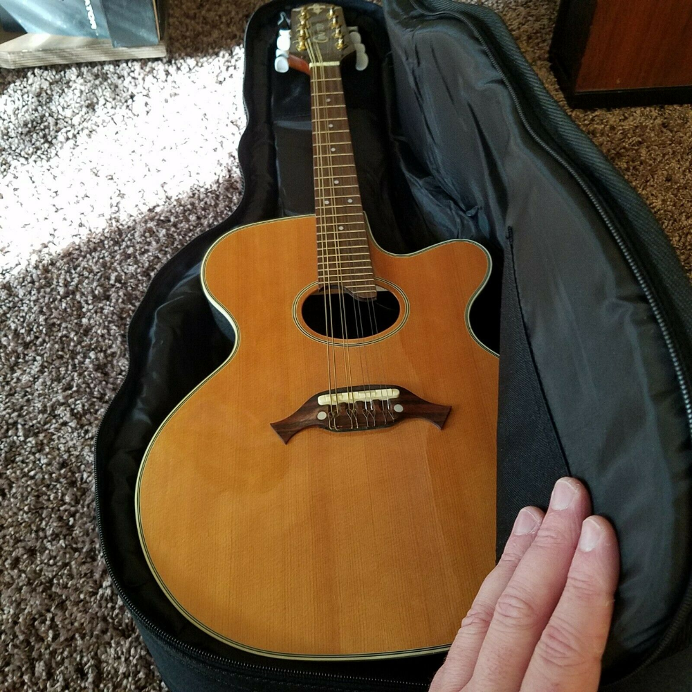 32++ Crafter acoustic guitar price philippines info