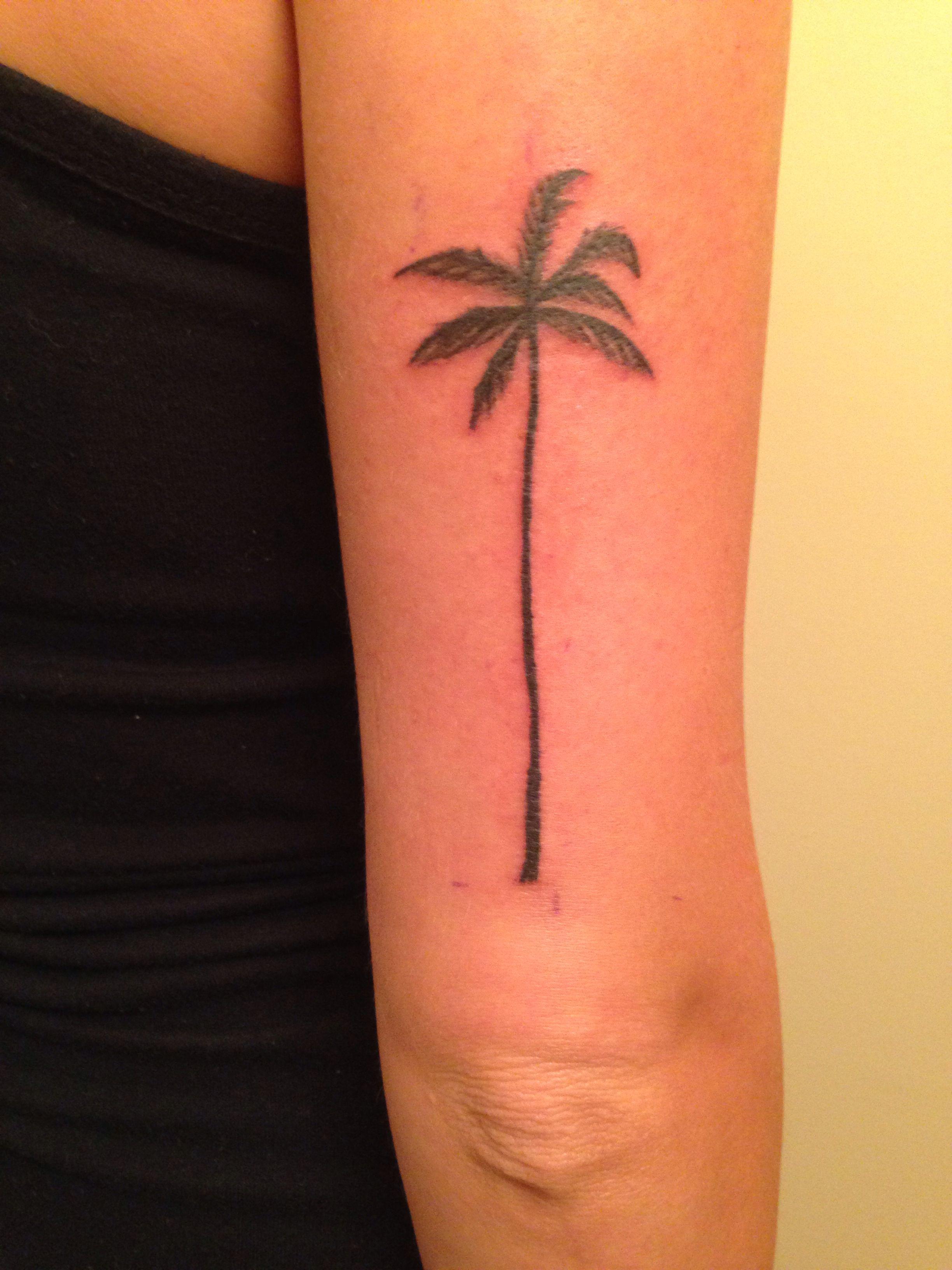 My new palm tree tattoo! Tree tattoo arm, Palm tree