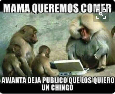 Funny Monkey Meme In Spanish : Pin by mar lyndo on mar lyndo mexican humor and humour