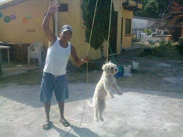 Mexican Authorities Are Searching For Man Who Hanged Dog