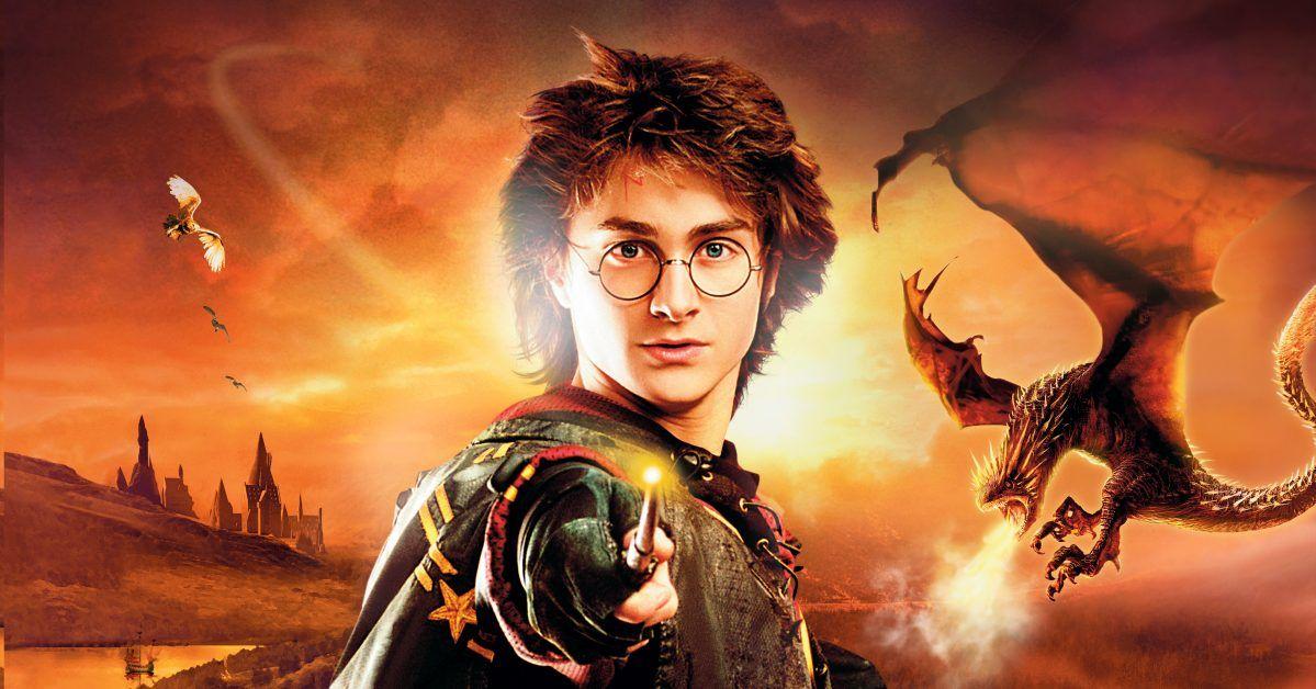 Pin By Nadia Caimi On Harry Potter Harry Potter Goblet Daniel Radcliffe Harry Potter Harry Potter