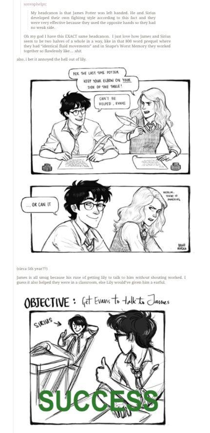 Bellemrdch Harry Potter Universal Harry Potter Funny Harry Potter Marauders