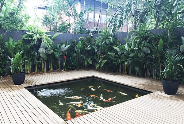 local business archives thai garden design backyard ideas rh pinterest com