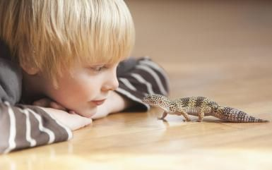 You may want to rethink that pet lizard. Researchers recently reported that about one in four cases of Salmonella infection in preschool children was associated with having a pet snake or other reptile... #greatnames
