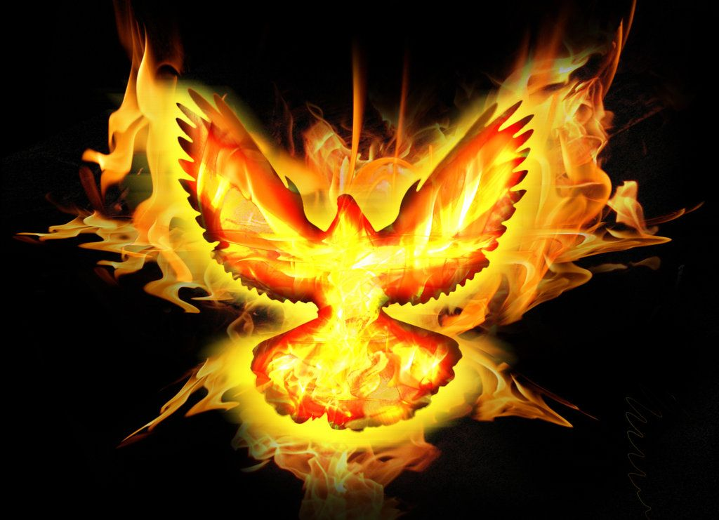 Holy Spirit Fire Dove By FABIOMETALCORE