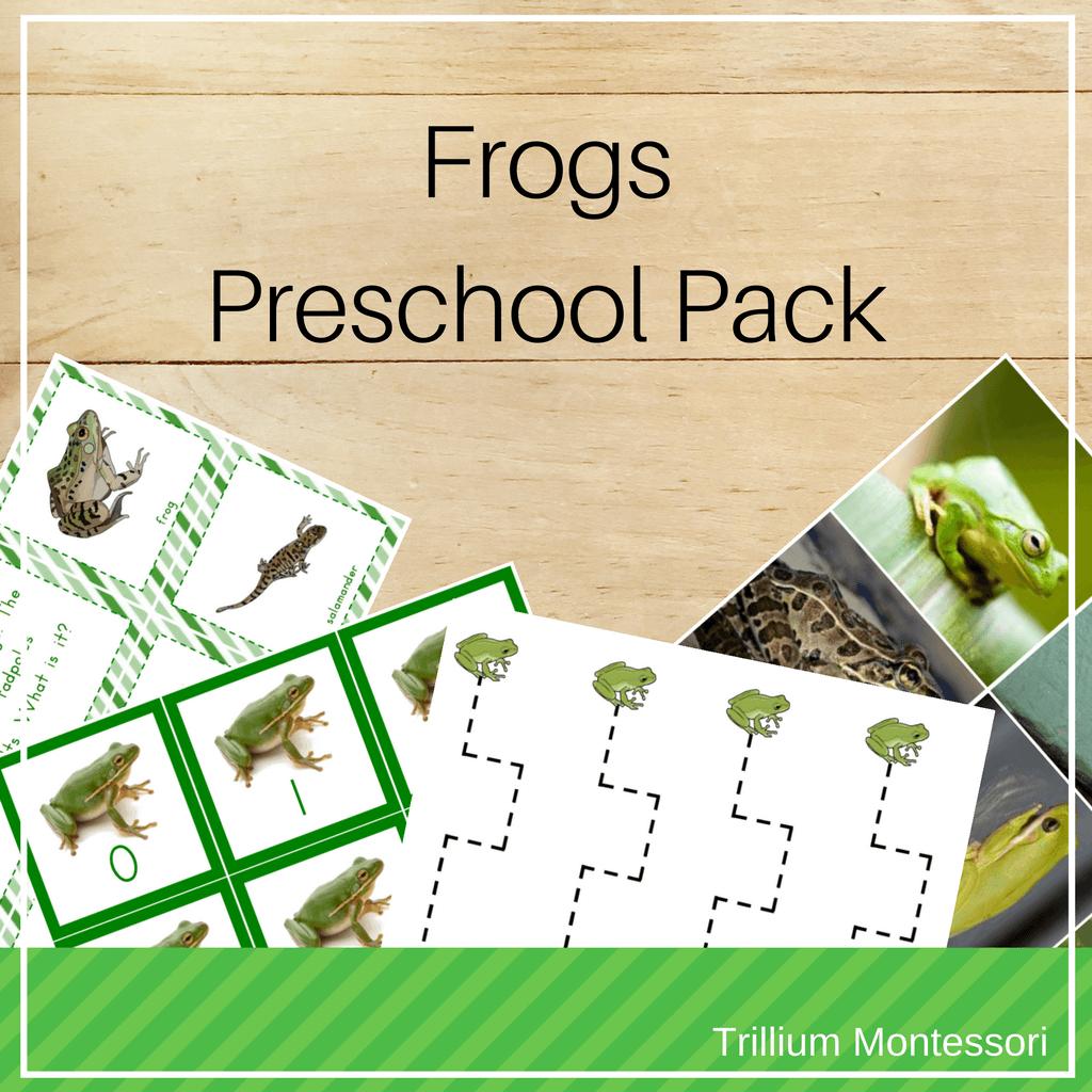 Frogs Amphibians Preschool Pack