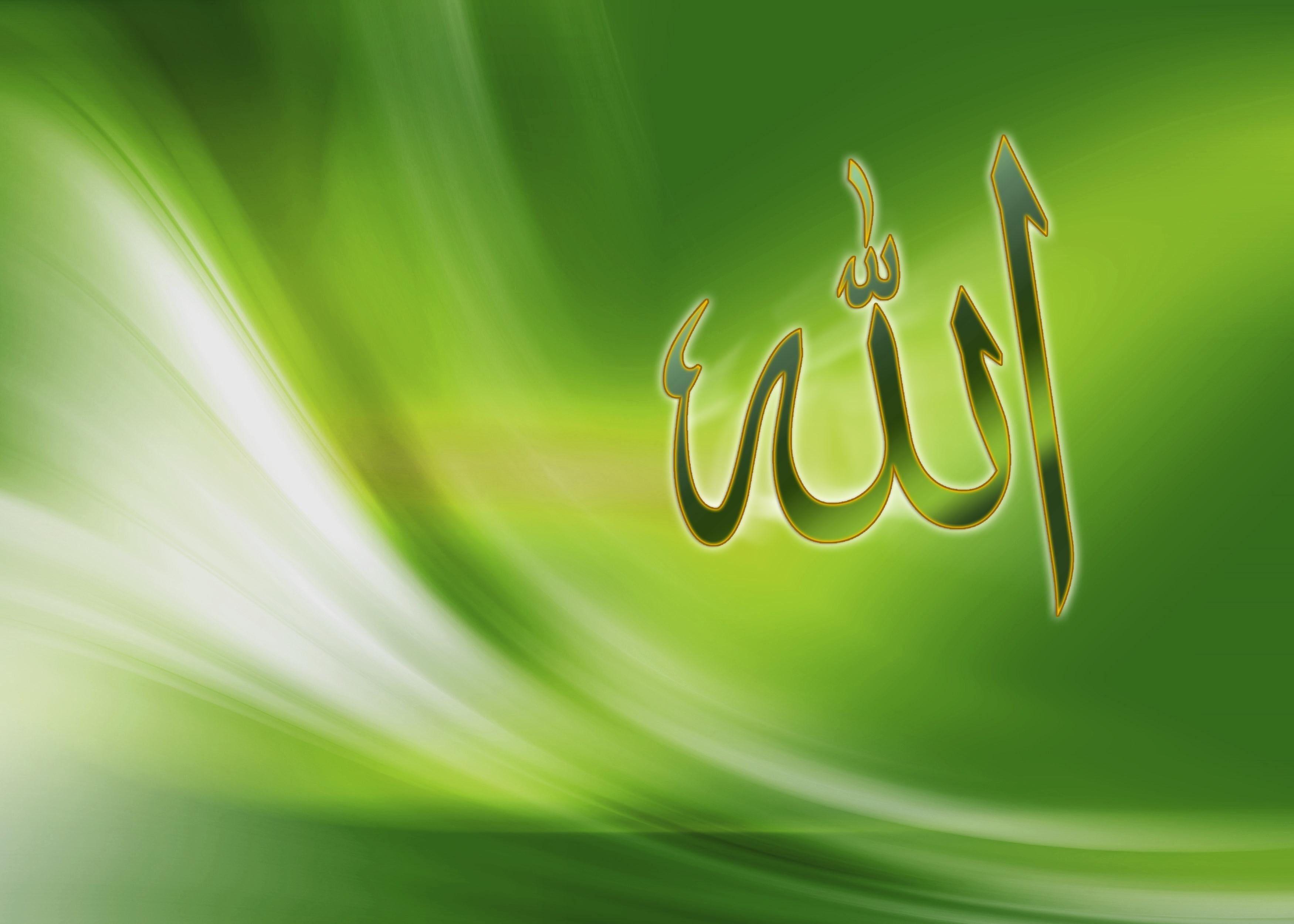 Allah Calligraphy Allah Islam Wallpapers Vista 2k Wallpaper Hdwallpaper Desktop Allah Wallpaper Name Wallpaper Moving Wallpapers