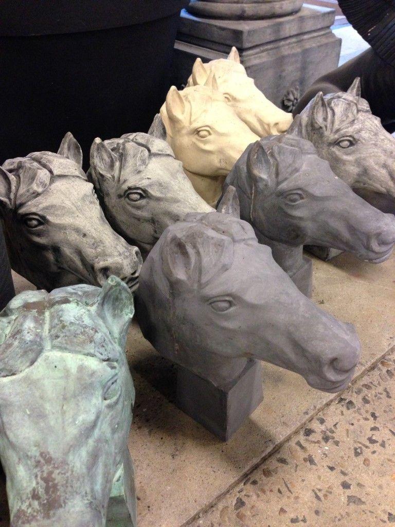 Stallion Horse Head