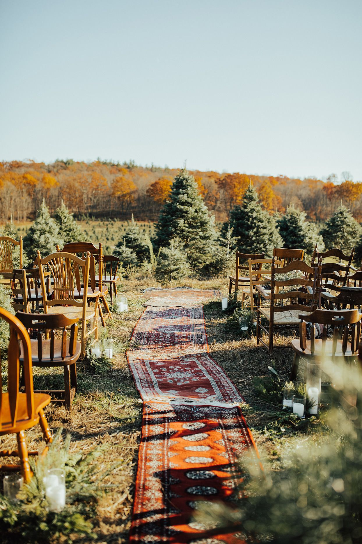 Exclusive Blogger Noelle Downing Married Her Best Friend On A Christmas Tree Farm In Rhinebeck New York In 2020 Tree Farm Photo Shoot Christmas Tree Farm Tree Farms