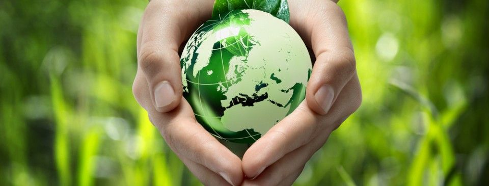 Ideas For Going Green in the Classroom - Supporting Education