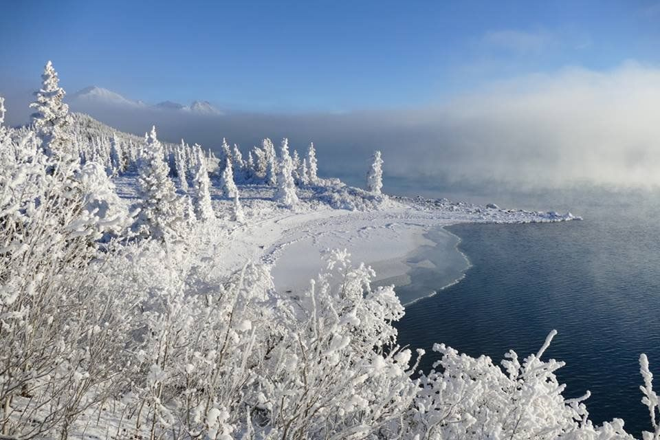 The ground and trees are covered in thick snow on the edge of a blue lake on a foggy morning.