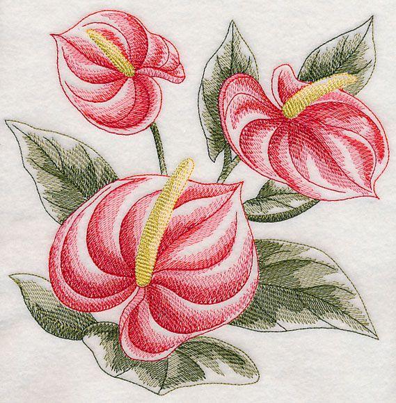 Sketched Anthuriums Pintura Em Tecido Flores Pintura Em Tecido Rosas Artesanato Em Geral