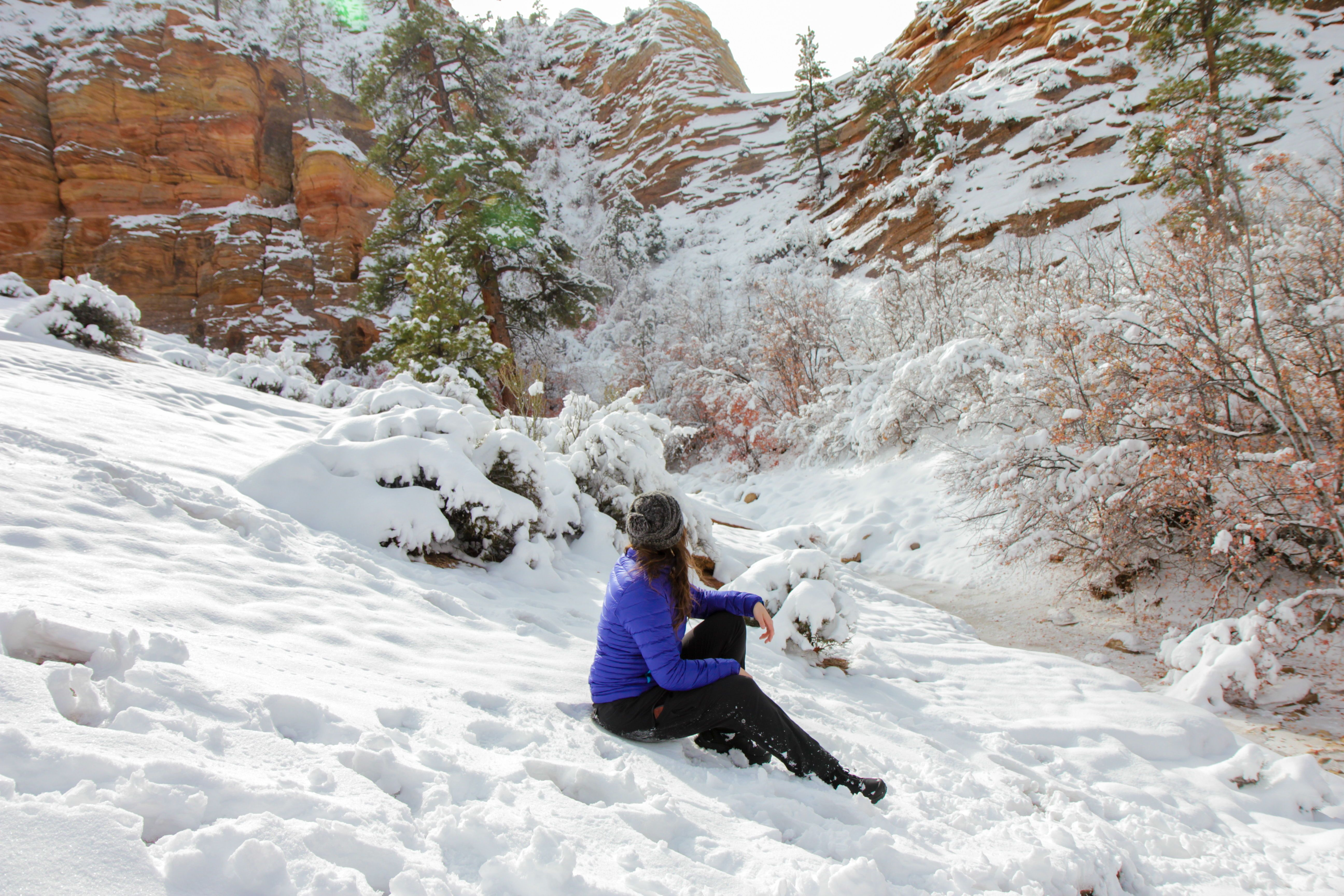 Exploring Zion National Park in the Winter   Zion national ...